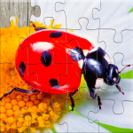 Insect Jigsaw Puzzles Game – For Kids & Adults 🐞 25.2 MOD (unlimited money)