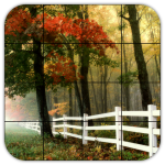 Tile Puzzles · Forests 1.44.fo MOD (unlimited money)