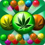 Weed Bubble Shooter Match 3 Games 3.7 MOD (unlimited money)