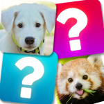 Memory Game: Animals 4.1 (MOD, unlimited money)